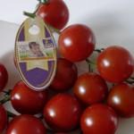 Bio Choco Tom – Eine ganz besondere Bio-Tomate
