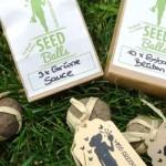 Seedballs von Miss Greenball – Eine Samenkugel mit Blumen, Kräuter oder Gemüse