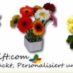 Gewinnspiel! Gutschein für Blumenversand im Wert von 35 Euro gewinnen