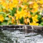 Vorstellung Ratgeber für Brunnenbau: brunnen-bohren.info